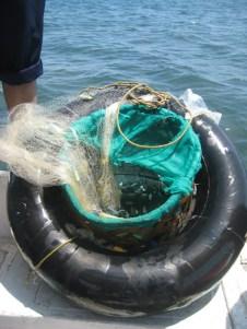 Ban berisi oksigen dan keranjang ikan hias