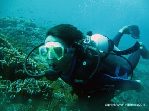 Survey Reef health di perairan Alor (Part 2)