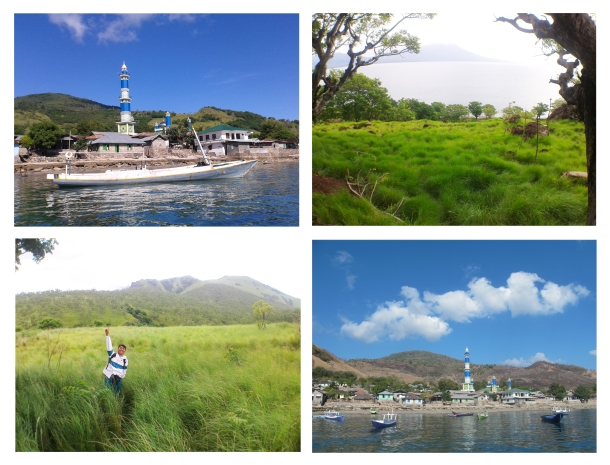 landscape pulau Solor